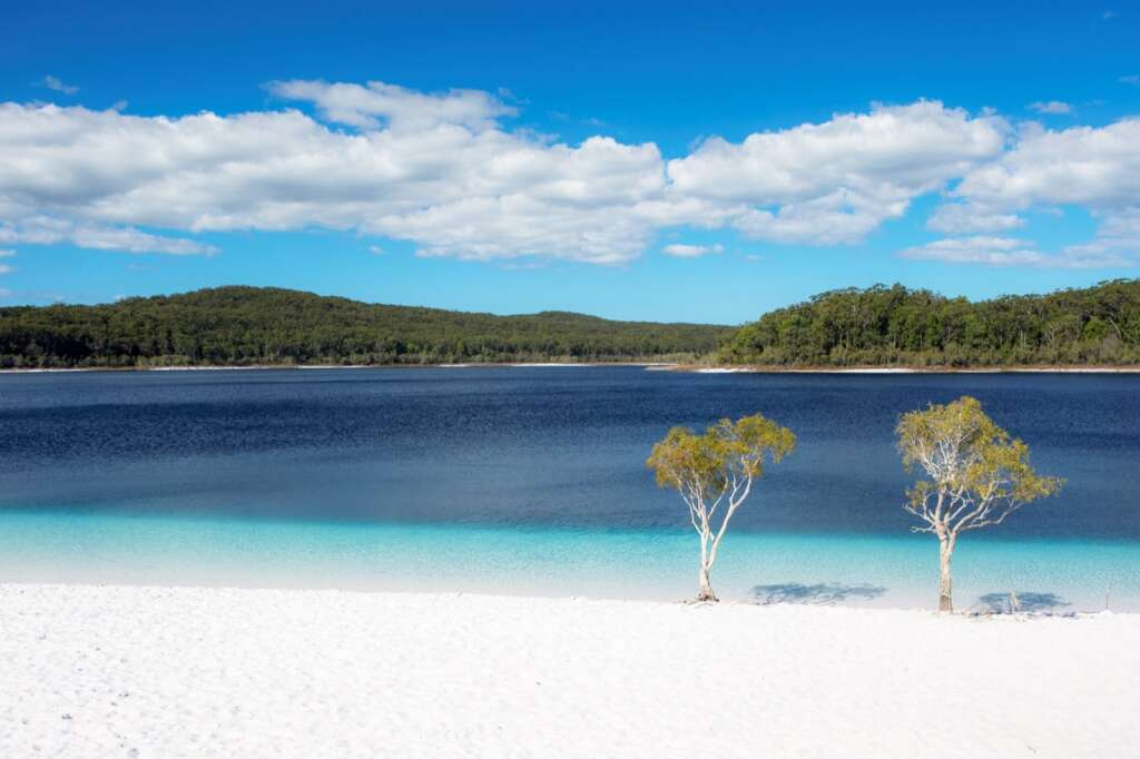 Which Fraser Island 1 Day Tour ?
