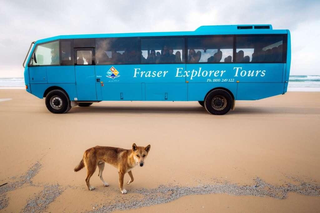 Fraser Island 4wd Self Drive